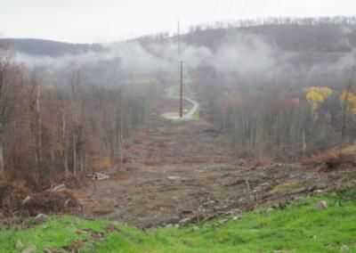 PPL Northeast Pocono Reliability Project